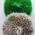 Tawashi - Eponge écologique