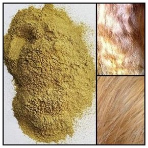Henné blond