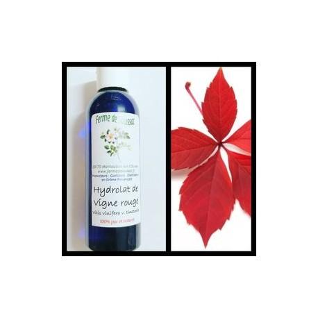 Vigne rouge (hydrolat)