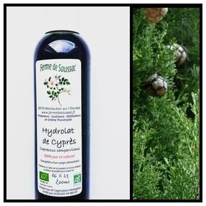 Hydrolat de cyprès bio 200 ml
