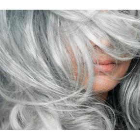 Shampoing à l'Argent (pour les cheveux blonds et gris) PHITOFILOS