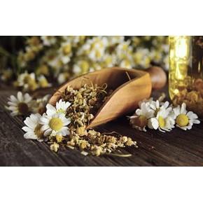 Fleurs séchées de camomille bio