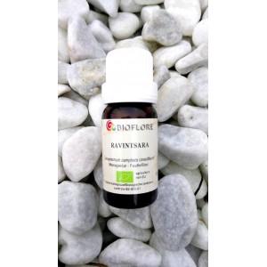 Ravintsara BIO (huile essentielle)